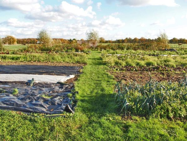 Farm design Herenboeren