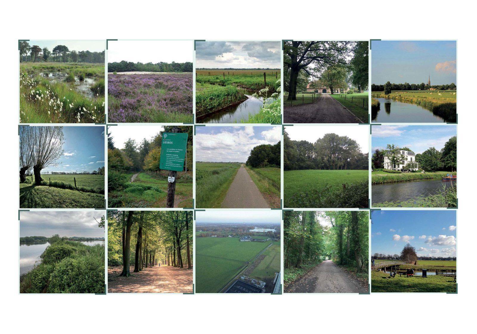 04_Rethink farmsteads_VE-R